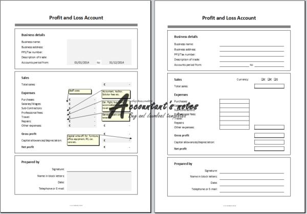 Profit and Loss Account Screenshot